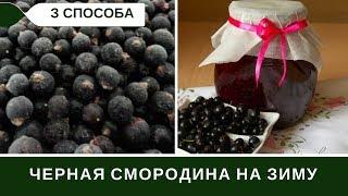 Черная Смородина На Зиму: Три Способа Заготовки + Малина
