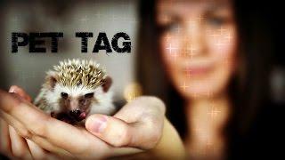 Konečně mám ježka! | PET TAG w/ Fredy [1/3]