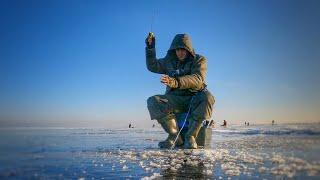 Пробурил ЭТУ лунку и понеслось Ловля окуня на балансир Зимняя рыбалка на льду