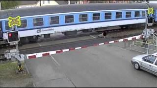 بالفيديو: رجل مجنون يحاول العبور أمام قطار سريع فهل سينجح؟