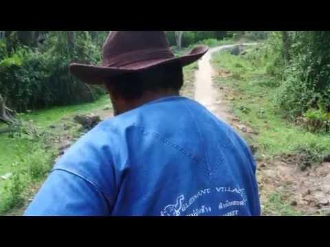 the-amazing-elephant-rides-thailand.