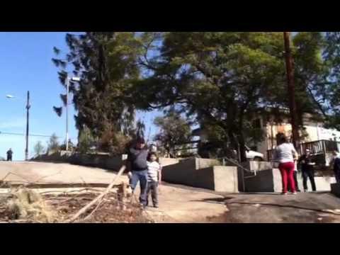 El pino mas famoso de los angeles de sangre por sangre asi for El mural pelicula descargar