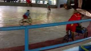 Monkeys riding tiny little monkey bikes