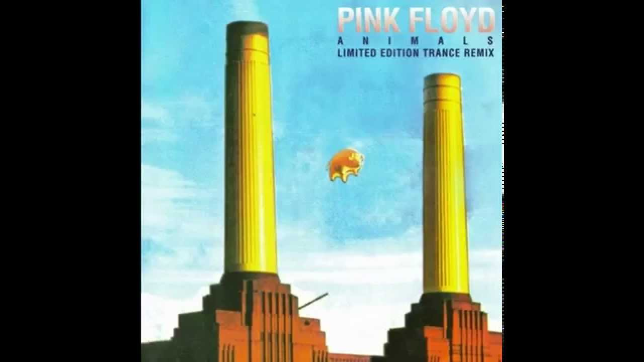 Pink floyd animals - Pink Floyd The Orb Animals Trance Remix Full Album