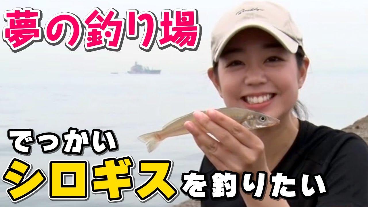 GO!GO!九ちゃんフィッシング #381 「横浜沖堤!シロギス!イワシ? 堤防チョイ投げサビキ釣り!」