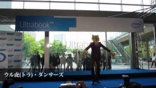 ウルトラ(虎)ダンサーズ - インテルフェスタ2012 Ultrabookの時代が来た - Intel thumbnail