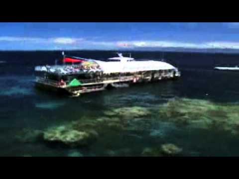 Reef Magic Day Tours