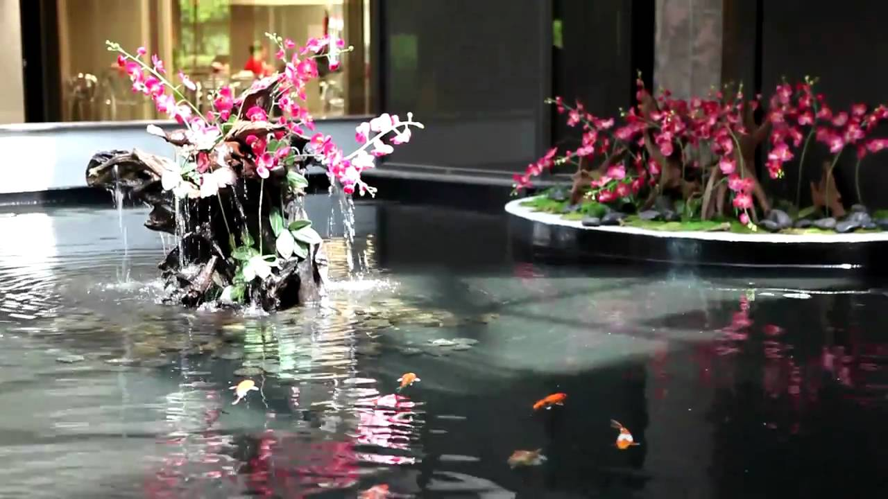Indoor Japanese Koi Pond By Okeanos Aquascaping