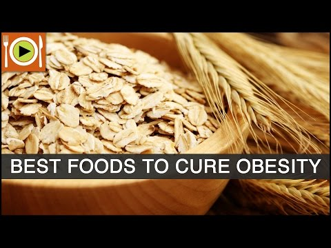 Foods to Cure Obesity | Including Fiber, Whole Grains, & Protein Rich Foods