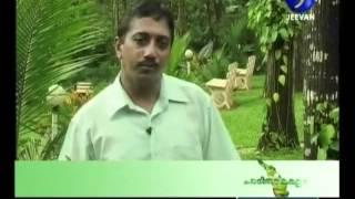 Farm tourism in Idukki, Kerala 4th part.flv