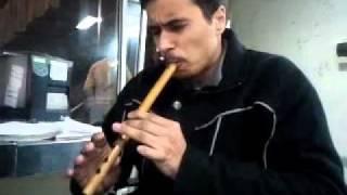 Flute_Version_55555
