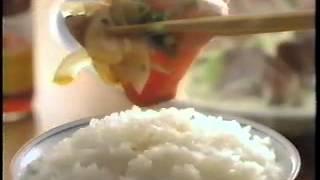 【1997 CM】ミツカン 味ぽん 西田敏行.