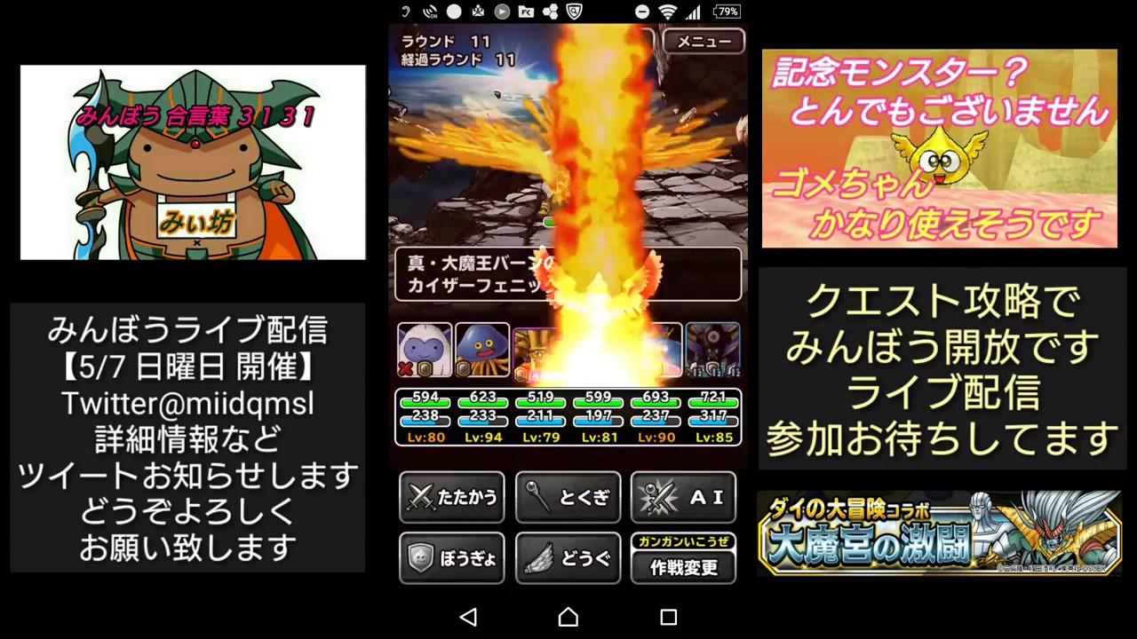 100 Photos of Dqmsl ゴメ ちゃん