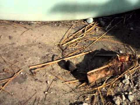 darling rendering Darling International here in Fresno, California-dead animal bones ...