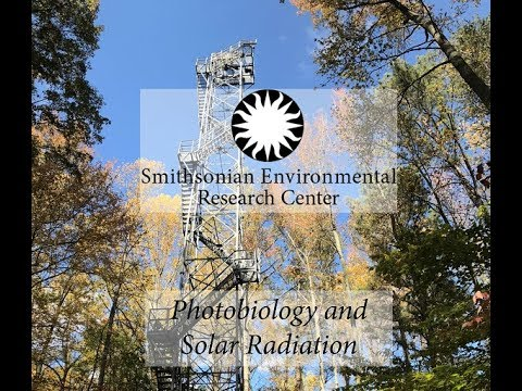 Photobiology and Solar Radiation--2017 Citizen Science Newsletter