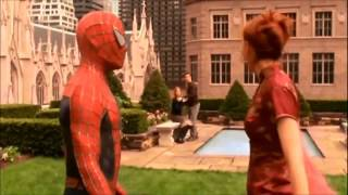 Fuck her right in the pussy (Spider-man Edition)