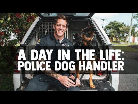A Day in the Life: Police Dog Handler