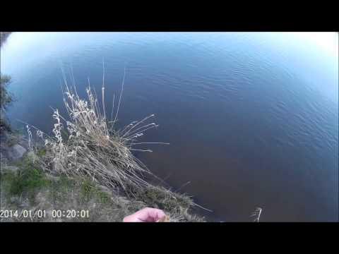 рыбалка на прегеле