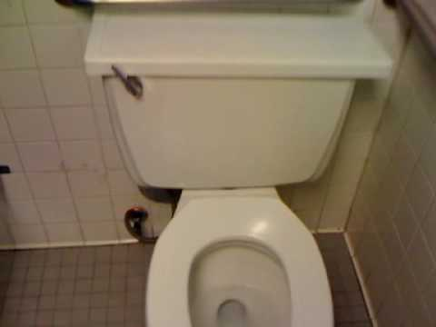 American Standard Cadet Toilet Flush At Restaurant 1