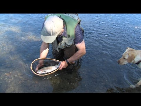 Outdoor Journal - Trophy Trout
