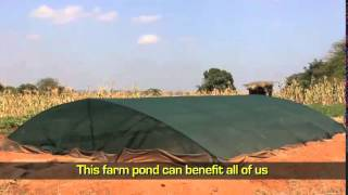 The Farm Pond: USAID Brings Rainwater Harvesting to Makueni County