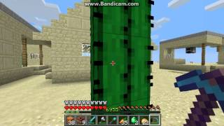Minecraft sand world survival Episode 9 - Hugin a cactus
