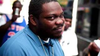 Beanie Sigel - Im Not Your Average Cat (Jay-Z Diss)