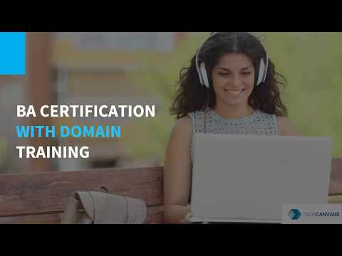 Business Analyst Certification with Domain Training