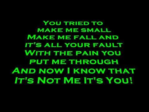 Skillet- It's Not Me It's You Lyrics (HD)