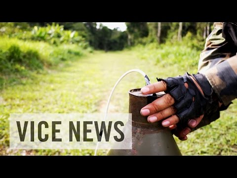 Peru's War on Drugs