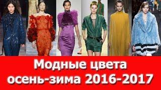 видео Модные платья лето-осень-зима 2016-2017
