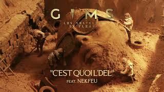 GIMS - C'EST QUOI L'DEL feat. NEKFEU (Audio Officiel)