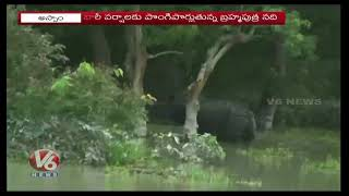 Heavy Rain And Floods In Assam   Wild Animals On Loose As Kaziranga National Park Submerged   V6