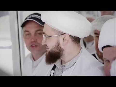 """Производство куриной продукции """"Халяль"""""""