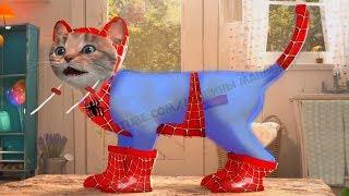 ПРИКЛЮЧЕНИЕ МАЛЕНЬКОГО КОТЕНКА мультфильм про котят - Мимимишка мультик для детей мультики на #ММ