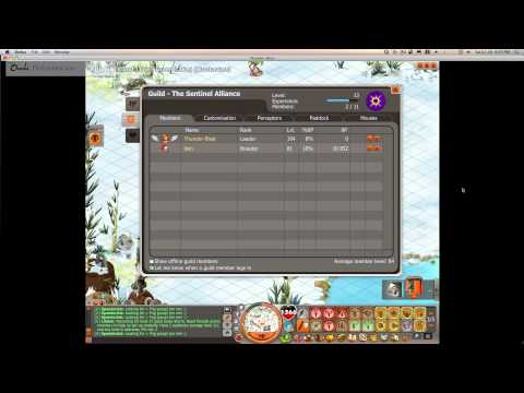 Dofus World Record, Number of Turns