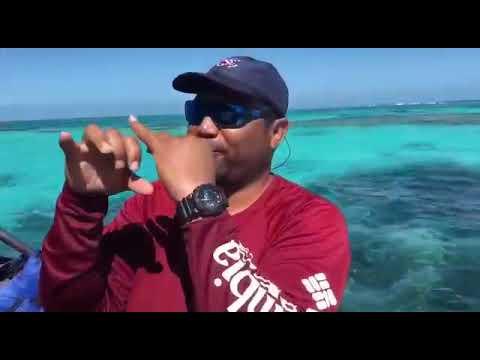 Explore Tropical Island In Belize with Richard Villanueva