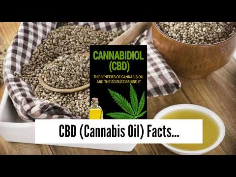 XN View Pocket net » Choosing Oil from Cbd - Where to Get Is Simple