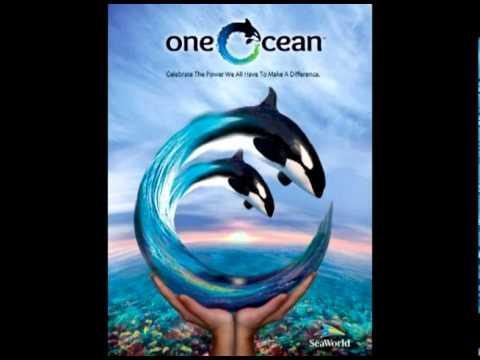 One Ocean Splash Warning Song