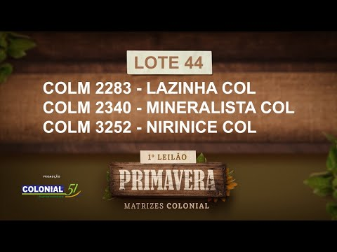 LOTE 44   COLM 2283,2340,3252