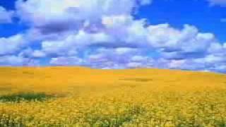 Kompliment - Allens Kloor - Schleswig-Holstein Song von R.SH mit Songtext - Version 2