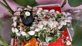 Mangalagaur pooja||Mangala gauri puja vidhi||Mangalagaur pooja procedure|Mangalagowri pooja vidhinam