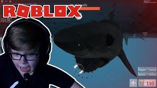 NON MANGIARE MEH! Roblox SharkBite #1