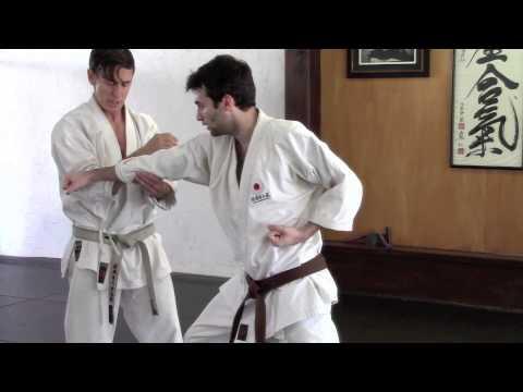 Karate Punching Defense 02