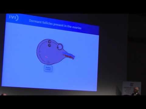 Ovarian rejuvenation |  Antionio Pellicer, Spain