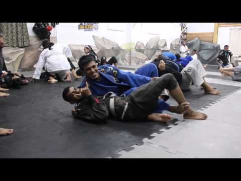 Mauritius Brazilian Jiu-Jitsu Federation - MBJJF