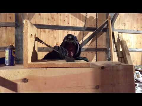 A Timber Frame Vlog #113 Winter Wonderland