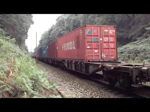 Контейнерные перевозки грузов по железной дороге