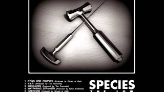 03-Shoelaces -  (Species the Low) - [Shallow Hardware EP]