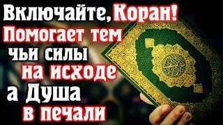 📣 ВКЛЮЧАЙТЕ КОРАН, ПОМОГАЕТ ТЕМ, ЧЬИ СИЛЫ НА ИСХОДЕ, А ДУША В ПЕЧАЛИ!